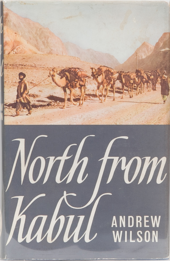 North from Kabul. Andrew Wilson.