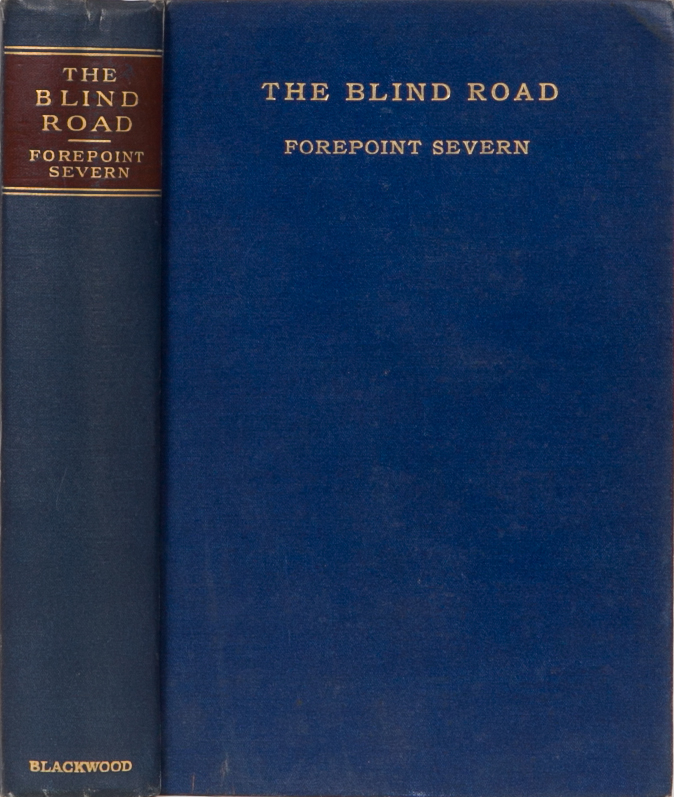 The Blind Road. Forepoint Severn.