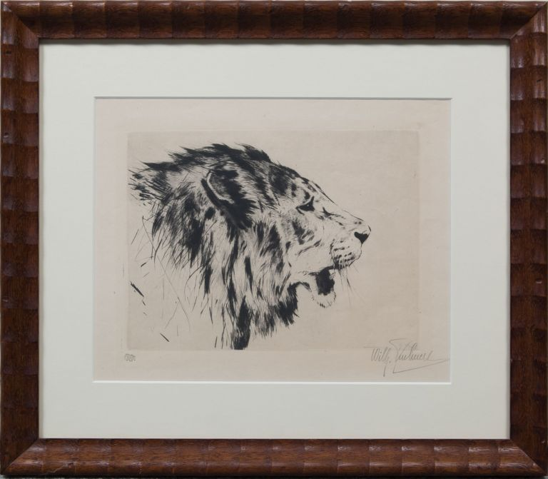 Lion Head. Wilhelm Kuhnert.