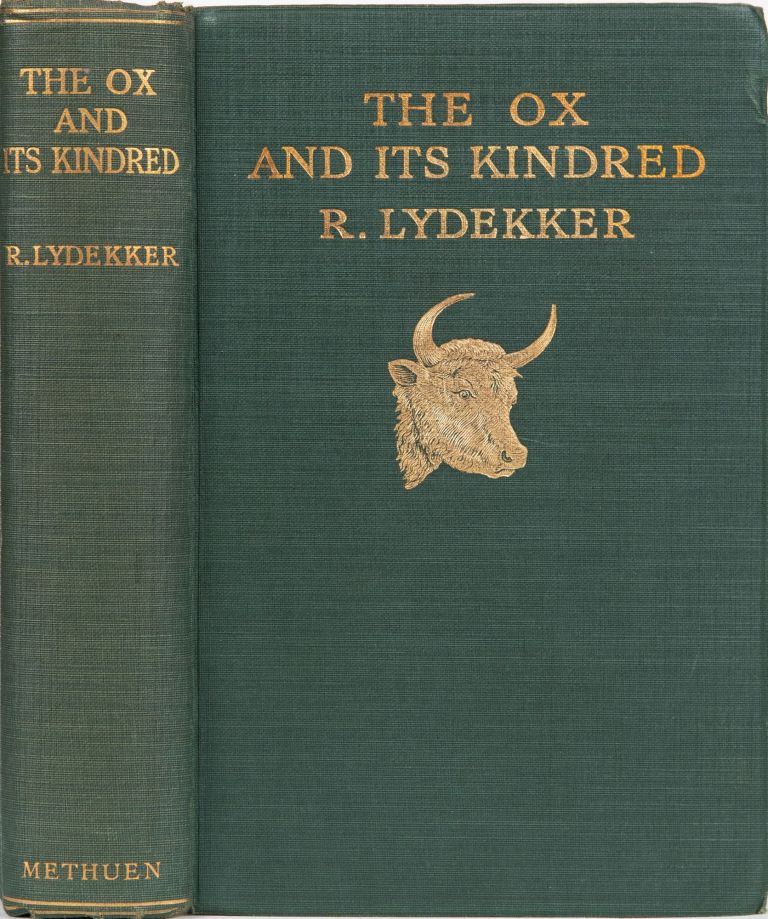 The Ox and Its kindred. R. Lydekker.