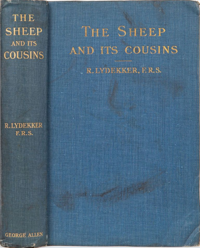 The Sheep and Its Cousins. Richard Lydekker.