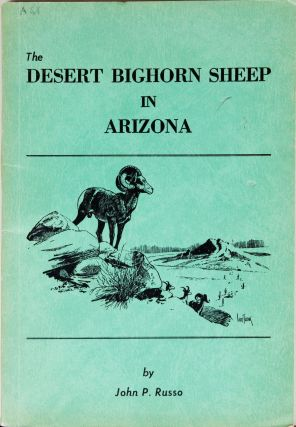 The Desert Bighorn Sheep in Arizona. John Russo