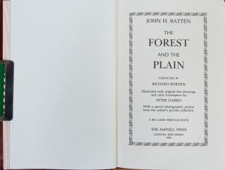 The Forest and the Plain