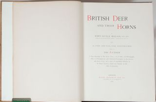 British Deer and their Horns