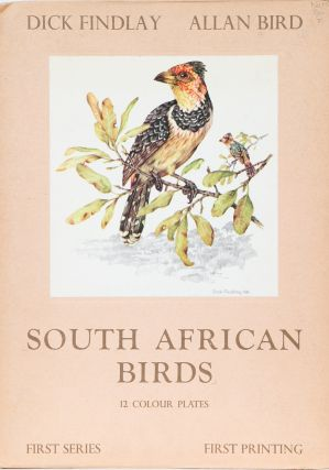 South African Birds. D. Findlay, A. Bird.