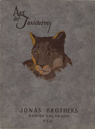 Art in Taxidermy. Jonas Brothers.