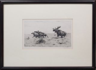 Fleeing Moose. Wilhelm Kuhnert.