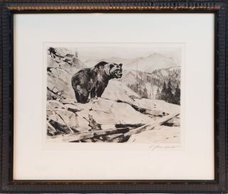 ORIGINAL ETCHING GRIZZLY BEAR. Carl Rungius