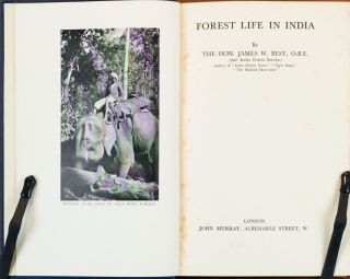 Forest Life in India