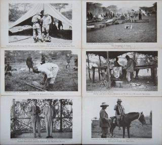 Hunting Trip in Africa (original postcards). Theodore Roosevelt