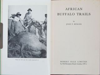 African Buffalo Trails