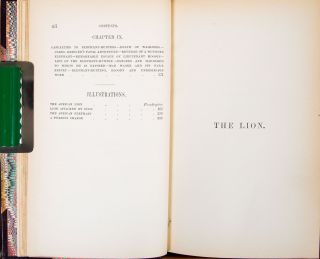 The Lion and the Elephant